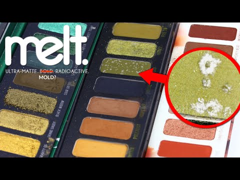 CAUTION: Melt Cosmetics Palettes | THE MAKEUP BREAKUP
