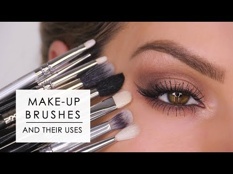 Makeup Brushes & How To Use Them – Eyes | Shonagh Scott